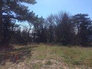 Земельный участок в г. Ялта, пгт. Никита, 90 соток - Фото 5