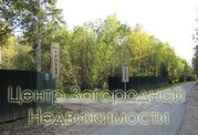 Участок, Калужское ш, Варшавское ш, 46 км от МКАД, Троица д. . - Фото 5
