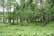 Земельный участок 14,65 соток, г. Москва, д.Чегодаево, Варшавское ш. - Фото 2