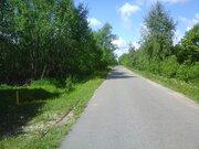 Продается участок 60 соток лпх в д.Чекчино Лотошинского района - Фото 5