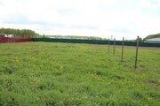 Участок 16 соток в деревне Долматово - Фото 4