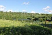 Продается участок д. Воронино, Тутаевский р-н (левый берег р. Волга) - Фото 5