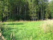 Дачный участок 20 соток, под строительство, экопоселок, Новорижское ш. - Фото 2