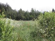 Продаётся земельный участок 21 сотка крайний к лесу в деревне - Фото 2