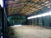 Земельный участок пром.назначения 1,03 га, Промышленные земли в Семенове, ID объекта - 200110131 - Фото 11
