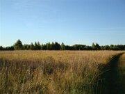 Земельный участок кфх - Фото 3