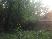 Продается уникальный лесной участок 12 сот. правильной формы в Кратово - Фото 2