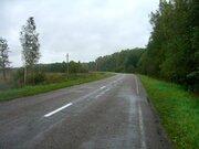 Земельный участок общей площадью 28 га в Талдомском районе - Фото 5