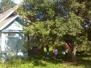 Дом 395км. от спб в Красногородском районе Псковской области - Фото 4