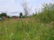 Земельный участок в Теряево - Фото 2