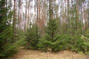 Участок 10 соток, 34 км Киевского или Калужского ш, ПМЖ, м. Саларьево - Фото 1