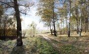 Участок 20 соток в лесу д. Репниково, Чеховский район. - Фото 1