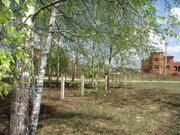 Участок у сан. Озеро Белое, Мещеры, 30 Га, Шатурский р-н - Фото 3