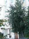 1 ком, кв-ра, м. Митино, ул.ген.Болобородова, д.16 - Фото 3