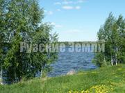 Живописный участок у леса и Рузского водохранилища - Фото 1