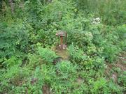Продам дачный участок в Мурмино с фундаментом - Фото 4