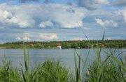 Первая линия р.Волга, участок 340 сот, ИЖС, лес - Фото 2