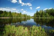 Красивый участок на границе леса у берега озера - Фото 5