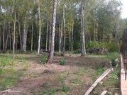 Лесной участок 15 соток в обжитом шикарном месте 5 км от г. Чехов - Фото 2
