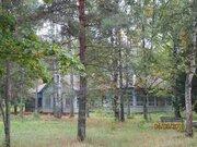 Продажа участка 25 га под базу отдыха (бывший пионерский лагерь) - Фото 4