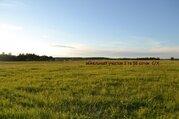 Продам участок сельхозназначение в Гатчинском р-не п.Елизаветино - Фото 1