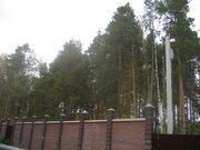 Лесной уч-к 20 сот. в п.Ильинский, сосны, ПМЖ, ИЖС, тихое место, асфал - Фото 1