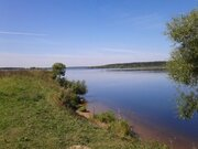 Участок с вековыми соснами на р. Волга, д. Игуменка - Фото 2
