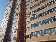 Продается квартира-студия с отделкой и мебелью, Купить квартиру в Пушкино по недорогой цене, ID объекта - 322006801 - Фото 7