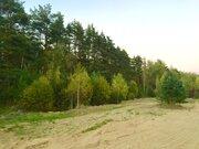 Зем. участок 11 соток у леса ИЖС - Фото 5
