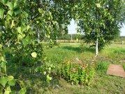 Продается земельный участок в СНТ Полесье д. Липитино Озерский район - Фото 1