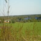 Продаю участок, ш. Горьковское, 60 км, Васютино д. - Фото 2