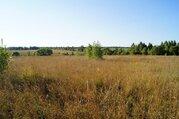 Продается участок 39 соток в Калужской области - Фото 3