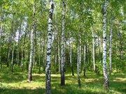 Земельный участок г. Бронницы - Фото 2