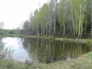 Продам участок 8 соток СНТ Борщево - Фото 1