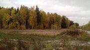 Участок у леса - Фото 4