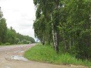 Продается зем. участок сельхозназначения вблизи д.Липитино Озерского р - Фото 1