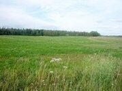 2 Га под сельхозпроизводство в Рузском районе - Фото 3