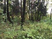 Продается участок, деревня Николо-Черкизово - Фото 5