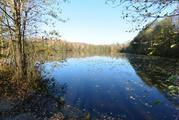 Продаётся ровный участок правильной формы возле леса и пруда. - Фото 1