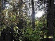 Участок с лесными деревьями в старо-дачном месте, крайний к лесу - Фото 4
