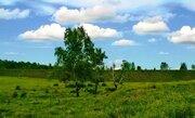 85 га в деревне по Новорижскому земля сельхозназначения - Фото 3