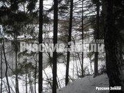 Редкое предложение - лесной участок с собственнымм пляжем - Фото 5