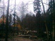 Продается земельный участок 12 соток, д.жёдочи - Фото 1