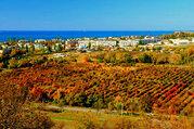 Виноградники, плодовые сады, сельхоз земля в Севастополе - Фото 4