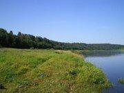 Участок 82 га, первая линия р.Волга, Сосновый лес, газ - Фото 5