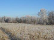 Тульской области Заокском районе в деревне Малахово - Фото 1