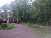 Продаются участкис лесными деревьями в д. Прохорово Чеховского района. - Фото 3