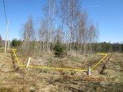 Земельный участок в садовом товариществе Клен - Фото 1