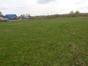 Участок в п. Салихово, 34 сотки в собственности - Фото 4