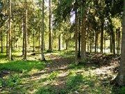 Лесной участок в Кобяково, СНТ Топаз, 22 сотки - Фото 2